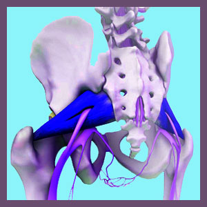 Causes of Piriformis Pain