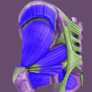 Piriformis Hip Pain